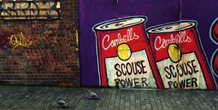 Scouse. (elam2010) Tags: street streetart birds liverpool graffiti pigeons sony brickwork streetshot scouse rx100 backberryst