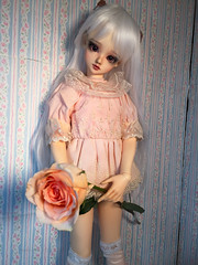 Nefret et Rose (NoNoNanoon) Tags: pink white anime rose japan hair toys photography frozen photo dolls lace bears gothic victorian disney pearls lolita kawaii bjd collectables volks elsa abjd selfie whitehair bjds abjds