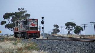 SCT008 enters the WIFT after a speedy run from Adelaide