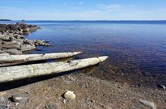 Hytiinen - Finland (s.niemelainen) Tags: lake nature suomi finland landscape sony north maisema luonto jrvi karjala hytiinen majaniemi kontiolahti carelia pohjois sonya6000
