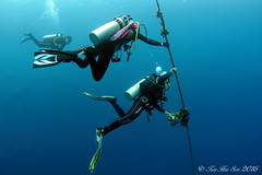 SEN_0290 (huisen) Tags: nikon scuba fisheye tokina weh isotta 1017mm d7100 ysd1 isotecnic