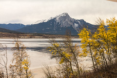 Along the Athabasca River with a Rockies Backdrop Seen from VIA Rail Canada's The Canadian 2 (ppoggio2) Tags: canada trains alberta transportation northamerica locations canadianrockies viarailcanada 2015100507winnipegmbvancouverbc