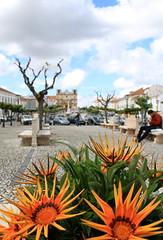 Vila Viosa, Alentejo (Portugal) (Kristel Van Loock) Tags: travel portugal europa europe alentejo viaggio portogallo vilaviosa alentejoportugal visitportugal may2016 alentejolovers visitalentejo alentejogram