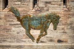 Glass Horse (John M Reynolds) Tags: northumberland bamburghcastle leicam60 fujiastia100femulation summiluxm35mmasphfle leicam240 leica60 leicamedition60