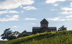 schloss johannisberg (maikepiel) Tags: sky clouds germany deutschland wine himmel wolken schloss rheingau wein weinberg johannisberg
