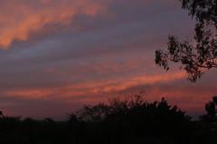 Sunset (Robbie Guarino) Tags: sky dusk australia queensland