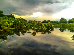 Storm cloud coming... (tomk630) Tags: morning storm nature clouds river texas guadalupe waterlevelpov