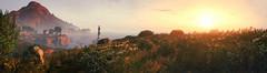 Morning walk (Nutellagoesbad) Tags: morning sunlight sun flower nature lighttower mountain deer water