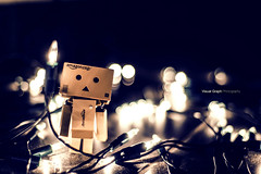 The aventures of Boxy (cline._.photographie) Tags: danboard danbo japanese figure amazon nikon nikond600 photography photo photographie photographer 18 50mm toys cute amazing light profondeur de champs intrieur bokeh