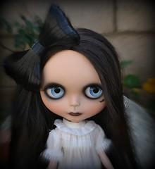 My Gorgeous Lucretia