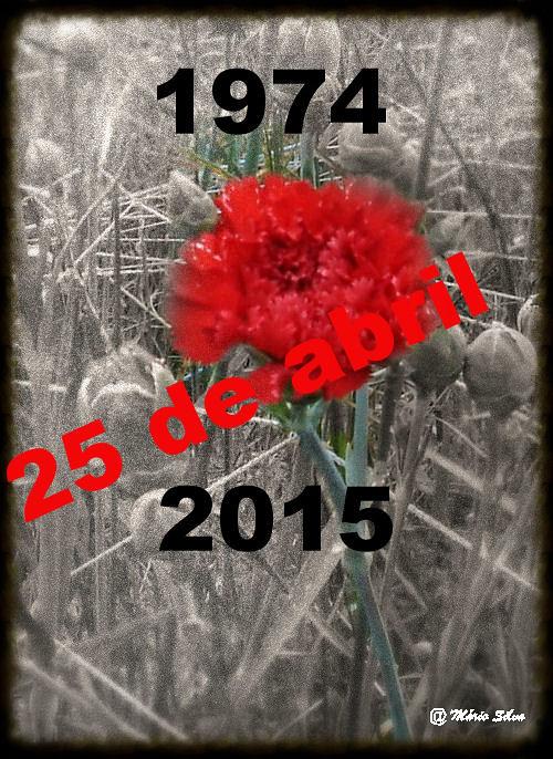 Cravo  - 25 de abril (1974-2015)