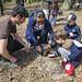 Planter son 1er arbre : une expérience initiatique