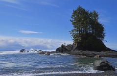 On the Rocks (charhedman) Tags: ocean tree water rocks waves vancouverisland pacificocean figure botanicalbay