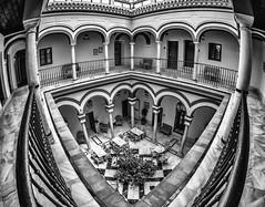 The Courtyard, Sevilla (derek.dpr) Tags: bw fish black monochrome architecture mono sevilla spain noir arch columns arches courtyard olympus seville architectural fisheye espana spanish column bianco nero omd em5