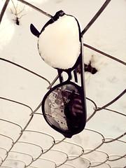 Shades... (Farhan Ali RaNa) Tags: white snow reflection outdoors blackwhite shades winters mobilephotography brokenlense