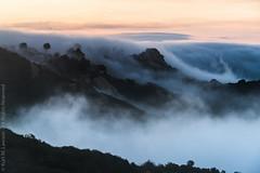 Cloud Overflow (Kurt Lawson) Tags: above santa trees houses homes sky mountains fog clouds sunrise losangeles marine rocks santamonica peak monica layer inversion shrubs saddle overflow marinelayer saddlepeak stuntroad