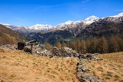 I Prati dell'Alpe Preda (Roveclimb) Tags: mountain alps trekking hiking ruin alpi montagna rudere rovina drogo valchiavenna escursionismo vho prestone alpeggio lirone cimaganda vallesangiacomo alpigia passodellalpigia alpepreda valdigiuust valletarda