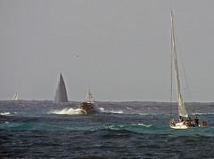 16061701791foceRid (coundown) Tags: genova mare vento velieri sailingboat ussmasonddg87 ddg87 ussmason mareggiata piloti
