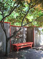 Waiting... (LotusMoon Photography) Tags: summer tree fence garden bench japanesegarden outdoor janesville hbm benchmonday happybenchmonday annasheradon