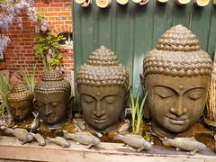 DSCN0789 (helenaedwards14) Tags: yoga garden heads budda sizes waterfountains gremany
