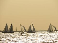Kiteboarding & Sailing (ptcruiser4dogs) Tags: kitesurfing kiteboarders sailing sails watersports okc 405 lakehefner atthelake weds lake surfers dudes girl oklahomacity h2o smile fun enjoy water kite waves