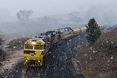 "2016-06-24 SSR SSR102-SSR101-G514 Sodwalls 4843 (Dean ""O305"" Jones) Tags: railroad food snow west train au main grain australia line southern nsw newsouthwales snowing ssr snowfall westons shorthaul 4843 sodwalls g514 ssr102 ssr101"