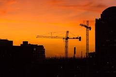 Cranes at Sunrise (Cal Holman) Tags: cranes sunrise sunset buildings austin txaustintexasunitedstatesus