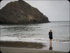Ocean (adolgov) Tags: california mendocino ocean pacificcoasthighway pch pacificocean