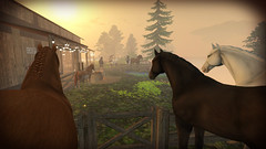 Misty Patience (Emi's Poison) Tags: ranch horse nature landscape farm digitalart sl fantasy secondlife fantasyart virtualworld