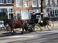 Paardenkoets Wittenburg Amsterdam (Arthur-A) Tags: netherlands amsterdam carriage nederland koets paardenkoets
