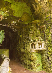 237A4239.jpg (Peter J Dean) Tags: family holiday portugal shrine catholic walk tunnel april pt pipeline madeira levada 2015 rabacal canonef1635mmf28liiusm canoneos5dmarkiii madeiraexplorers 25springs