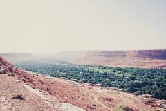 Morocco (Un Poco de Sur) Tags: red landscape desert oasis morocco