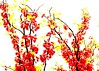 Japanese inspired (Krasivaya Liza) Tags: atl atlanta ga georgia southern spring flower flowers blooming nature floral budding blossoms trees park season beauty piedmontpark midtown urban oasis