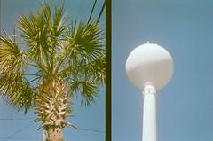 palm x water tower (ulanalee) Tags: film 35mm nc northcarolina palmtree halfframe olympuspen wrightsvillebeach olympuspenee3 fujisuperia fujisuperiaxtra400 penee3