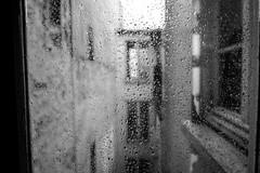Larmes sur des yeux secs (man:doo) Tags: bw reflection window rain fuji pluie nb fentre reflets cour gouttes fujixe1