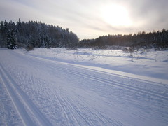 Skiing track Petikko - Serena (Vantaa, 20120128) (RainoL) Tags: winter snow forest finland geotagged skiing january u vanda fin vantaa 2012 hiihto uusimaa 201201 20120128 geo:lat=6032082900 geo:lon=2477216300