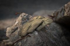 After work (Herr Olsen) Tags: work concrete glove rough beton handschuh rau stahlbeton