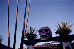 (*johnnyfavorite) Tags: california old travel usa film analog de dead skulls town los san day fuji pentax nps diego dia mexican journey muertos epson skeletons lx 160 v700
