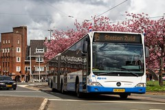 GVB Mercedes Citaro bus 362, Lijn 15, Surinameplein (Don Maskerade) Tags: world flowers bus tree public netherlands dutch amsterdam mercedes spring traffic transport nederland transportation mercedesbenz lente autobus bloesem gvb ov surinameplein the amsterdamse vervoer openbaar 362 lijn15 gemeentelijk of vervoerbedrijf