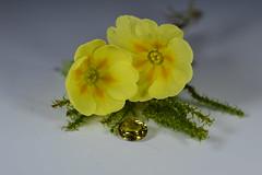 Mali Garnet. (gem.mania) Tags: yellow mali gem garnet primrose vulgaris gemstone