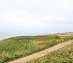 IMG_3496 (-Morgane-) Tags: ocean sea france nature landscape outdoors photography seaside sand rocks sion vende