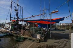 Fish Market (jbilohaku) Tags: fish canada vancouver pier muelle boat dock barco ship bc britishcolumbia pesca steveston canad vankuvero fii britakolumbio kanado columbiabritnica
