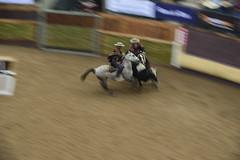 Final Champions 2016 Rancagua (Chile) (Photopinto) Tags: chile del america caballos iso100 nikon chili 110 f90 final rodeo sur cavalos champions chevaux rancagua d4 rodo 200400mm 2016mm