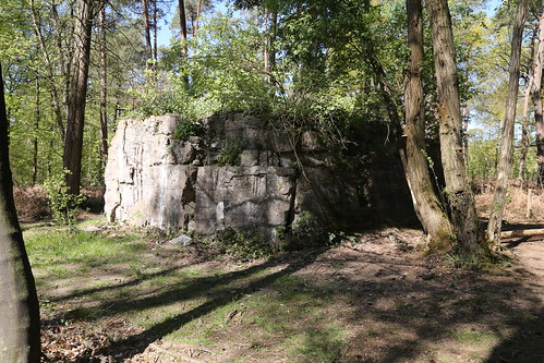 Polygon Wood.