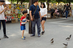 ZE2_1418.jpg (zac evans photography) Tags: city nyc family urban newyork birds brooklyn asian island happy metro pigeons tourist queens met manhatten staten yaszacevansphoto