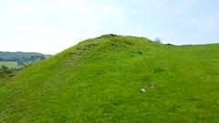 Rampart (Lil Shepherd) Tags: somerset landscape cadbury hillfort