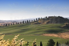 20160704_crete_senesi_siena_tuscany_666q7 (isogood) Tags: italy landscapes horizon country scenic tuscany crete siena cretesenesi asciano senesi