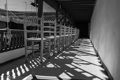 Chairs (Eduardo Estllez) Tags: espaa blancoynegro sol horizontal teatro monocromo madera europa chairs antigua duro historia almagro clasico ciudadreal sillas anea nadie castillalamancha gradas localidades luzdura corraldecomedias graderio estellez