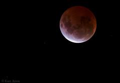 "lunar eclipse April 2015 • <a style=""font-size:0.8em;"" href=""http://www.flickr.com/photos/44919156@N00/16407873124/"" target=""_blank"">View on Flickr</a>"