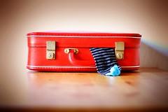 Don't forget your socks ! (CJS*64) Tags: travel holiday nikon sock rush dslr suitcase packed cjs rushed 50mmf18lens packedup redcase flickrunitedaward d3100 nikond3100 craigsunter cjs64